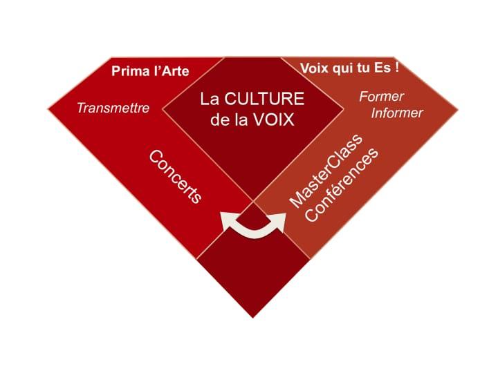 Diamant représentant la culture de la voix par la transmission de concerts et formation, information par masterclass et conférences